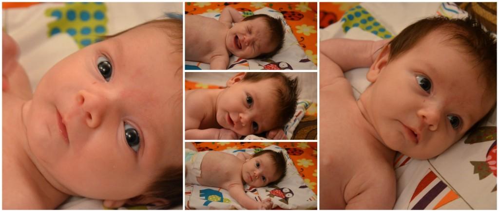 elsa 2 months