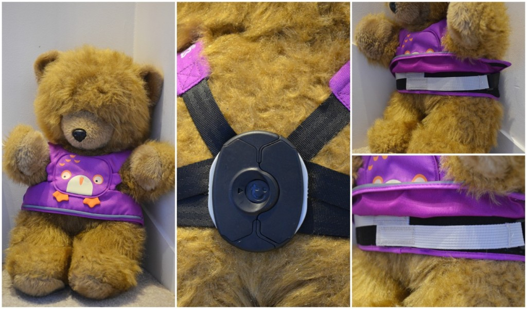 toddlepak bear