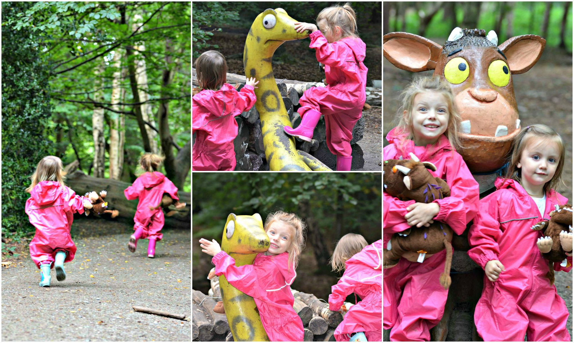 dry kids gruffalo adventure