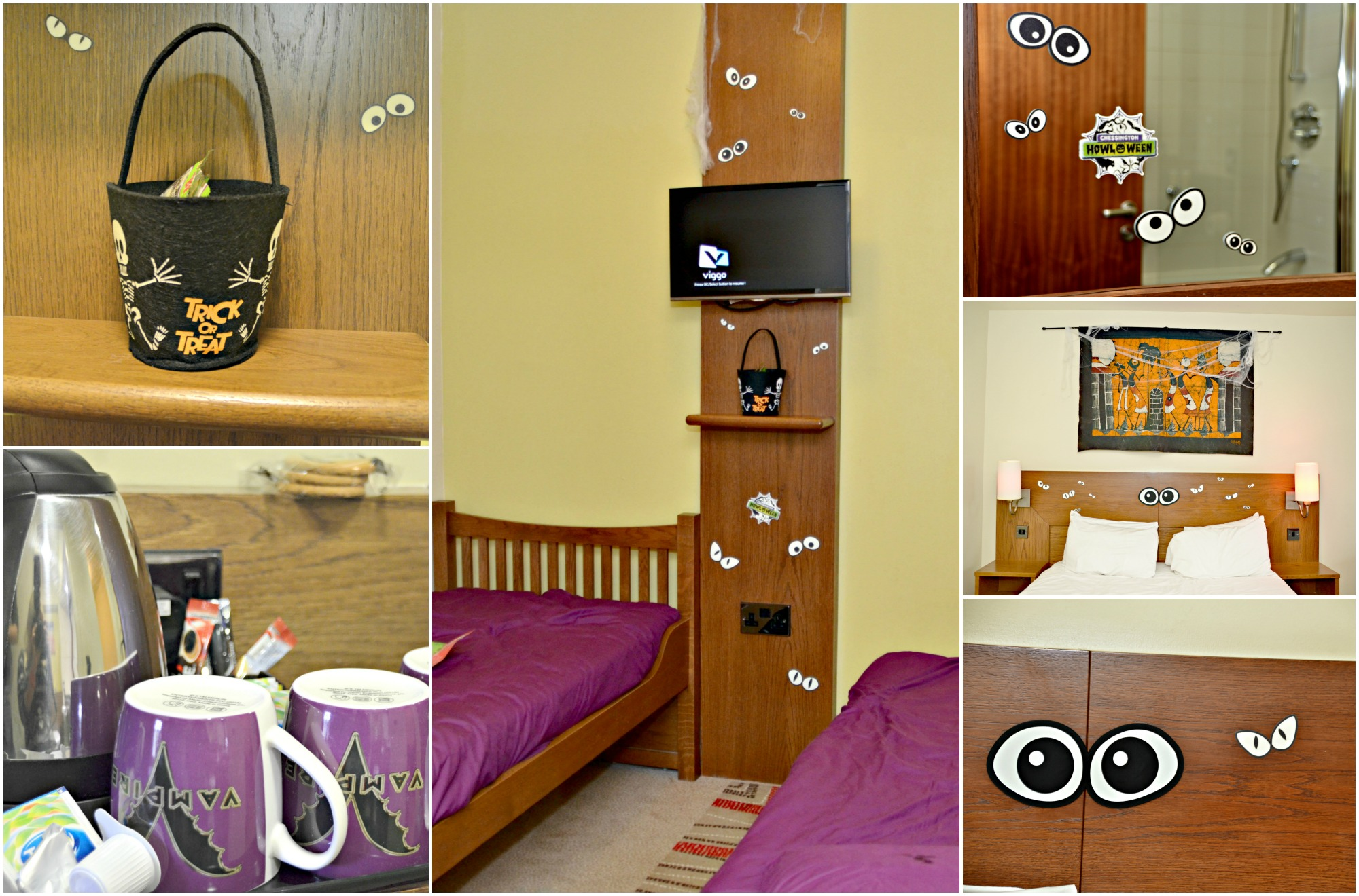 safari hotel room