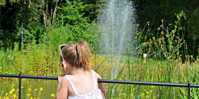 sevenoaks, cute, family, pond, water, rye lane, park, summer, lake