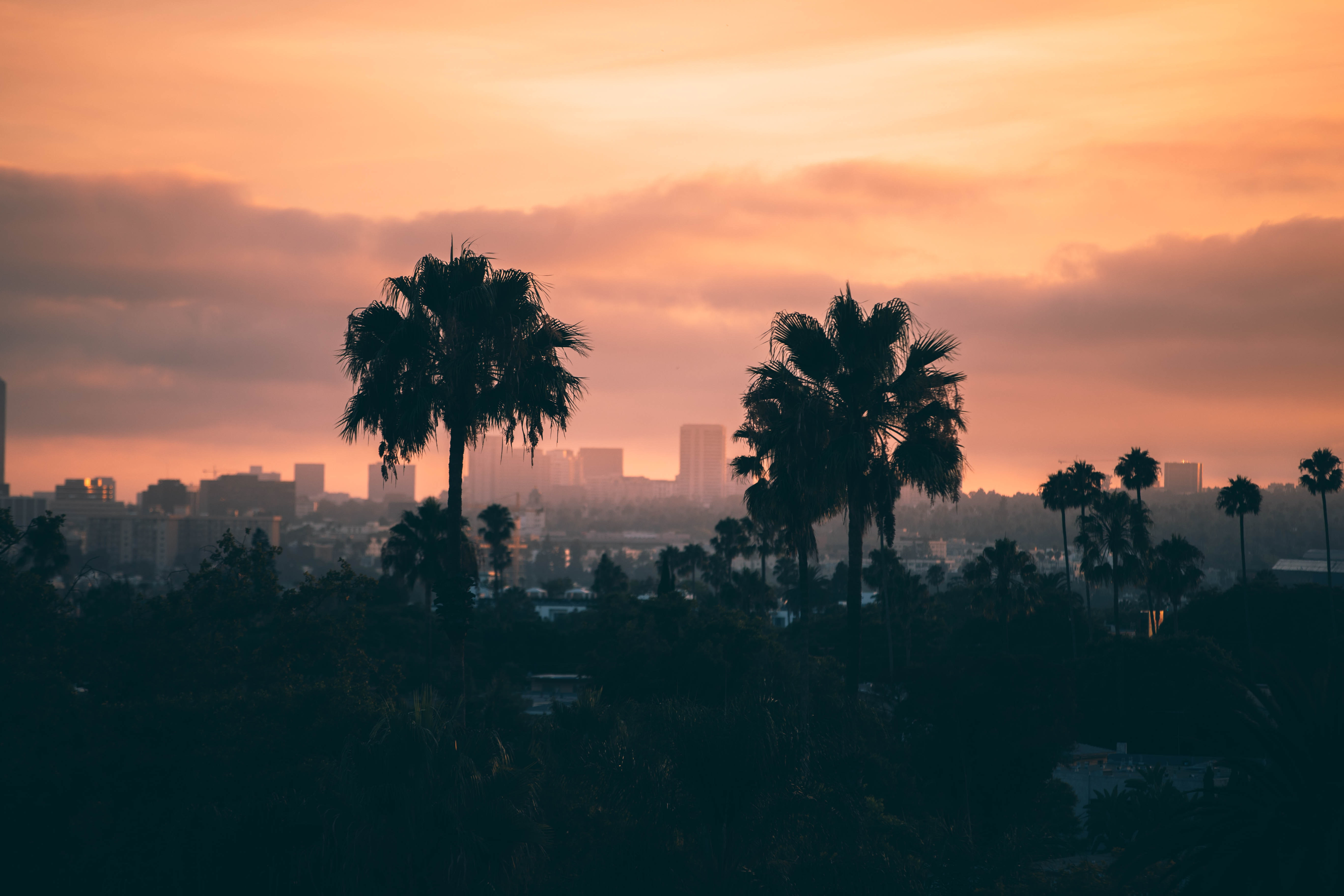The Best Time to Visit Los Angeles - Jodie Alice Fisher